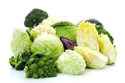 súp lơ và bắp cải sống không tốt cho đau dạ dày